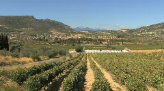 Landscape witn vineyards in Greece Stock Footage