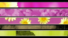 Retro Flower Texture Lower thirds Loop Stock Footage