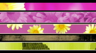 Retro Flower Texture Lower thirds Loop Stock Footage