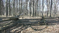 Valley Forge split rail fence  Stock Footage