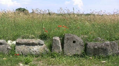 Etrusian archeological site at Vulci Stock Footage