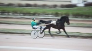 Stock Video Footage of on hippodrome jockey sits in carts and operated thoroughbred horse
