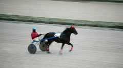 Horsy carries jockey in carriage on hippodrome track Stock Footage