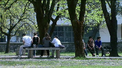 Students in the school yard - stock footage