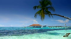 Tropical Paradise at Maldives with palms and blue sky - stock footage
