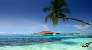 Stock Video Footage of Tropical Paradise at Maldives with palms and blue sky