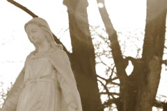 virgin mary statue at cemetry, dolly shot - stock footage