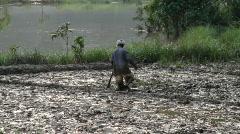 Man tilling paddy field Stock Footage