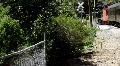Steam Train Ride HD Footage