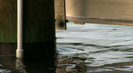 Stock Video Footage of Water moving on piling