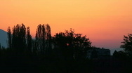 A sunrise behind the trees  Stock Footage