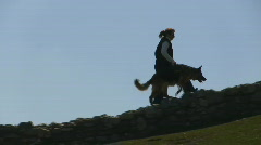 Search and rescue dog training Stock Footage