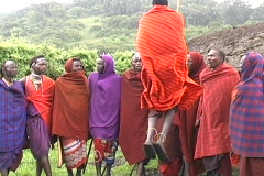Masai Dancing Stock Footage