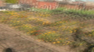 Stock Video Footage of Rooftop Gardens