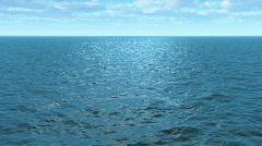 Ocean Flight A Stock Footage