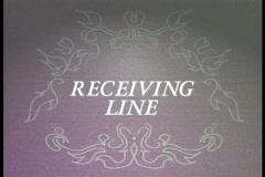 0419 Wedding Receiving Line  Stock Footage