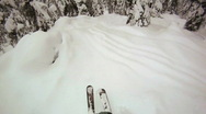 Stock Video Footage of POV Slow Motion Tree skiing powder
