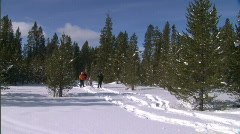 Winter Snowshoe Family Yellowstone 16 59.94 Stock Footage