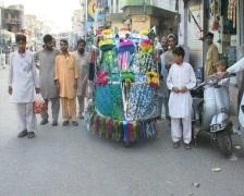 Elaborately Decorated Rickshaw Stock Footage