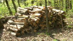 Wood - stock footage