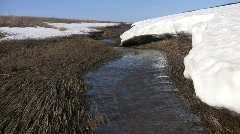Spring purling stream at a snow field edge Stock Footage
