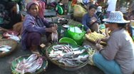 Stock Video Footage of CAMBODIA-MARKET-FISH 1