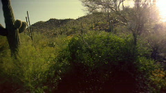 T183 desert mexico dry land arizona arid climate Stock Footage