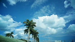 HD 24p driving with palm trees Stock Footage