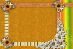4804 Daisy ribbon frame corkboard  Stock Footage