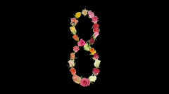 Montage opening rainbow roses number 8 shape alpha matte 8n (720p) Stock Footage
