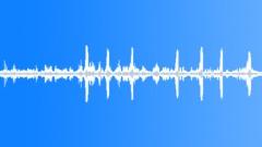 birds forest #3 - sound effect