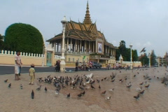 CAMBODIA-PALACE-PIGEONS 2 Stock Footage
