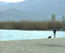 Man with a dog  Stock Footage