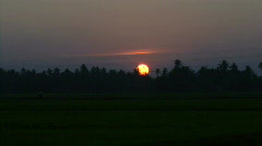 Farmers Spraying Pesticides On Rice Field at sunset, Kerala, India Stock Footage