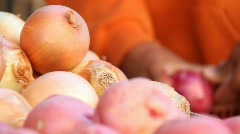 onions - stock footage