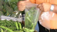 Stock Video Footage of farmers market 1
