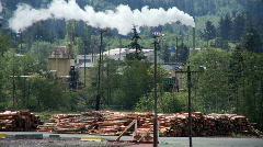 sawmill - stock footage