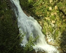 Small Waterfall in the Black Forest, Germany Stock Footage