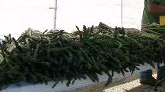 Farmers' Market, Asparagus Stock Footage