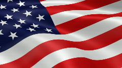 USA FlagInTheWind - stock footage