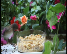 Two birds at a feeder with flowers pal Stock Footage