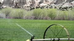 sprinkler, farm land - stock footage