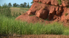 Grass and red rocks - stock footage