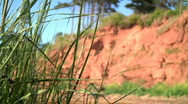 Stock Video Footage of Grass and red cliff face