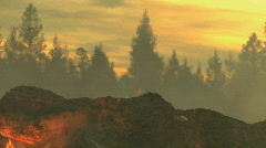 Red flames from Forest Fire Stock Footage