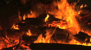 Burning Logs on Fire Stock Footage