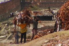 Bangladesh tannery scraps 01 Stock Footage