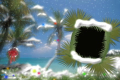 4902 palm trees branchs sun beach water picture video frame - stock footage