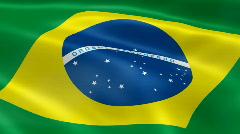 Brazil FlagInTheWind Stock Footage