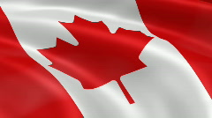 Canada FlagInTheWind Stock Footage